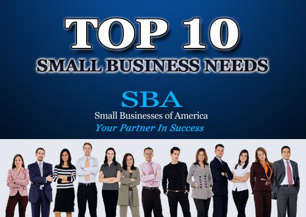 2013 SBA TOP 10 SMALL BUSINESS NEEDS