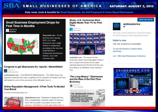 SBA Small Businesses of America 080313