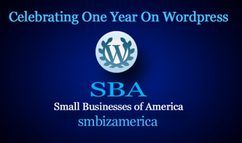SBA Small Businesses of America smbizamerica First Year
